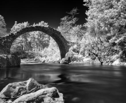 Customer Image - Stuart Lamont - Nikon D200 IR (830nm)