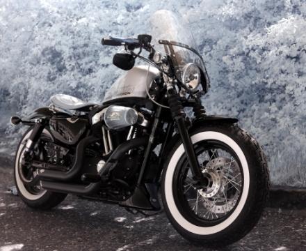 Harley - Canon 5D MkII IR (720nm) - Neil Himsworth ACS Technician